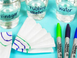 This fun solubility activity is suitable for early elementary aged kids.